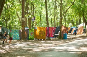 Colorful Wanee Sheets & Banners